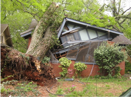Big-Tree-Falls-On-House-768x573