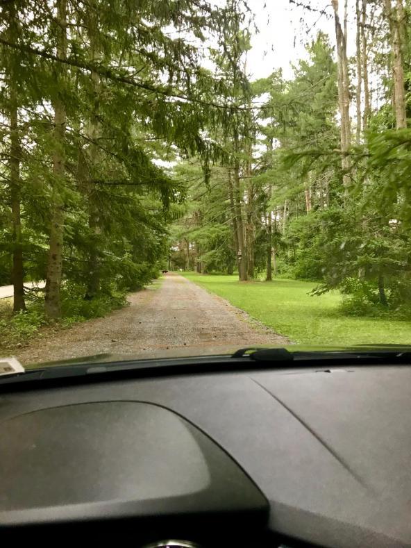 driveway.jpeg